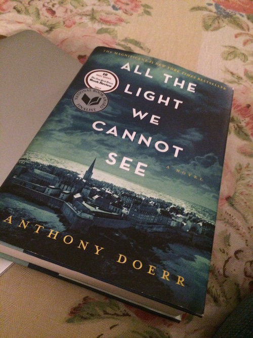 Book Review All The Light We Cannot See Between Parents