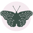 ButerflyIcon_100_Circle.png