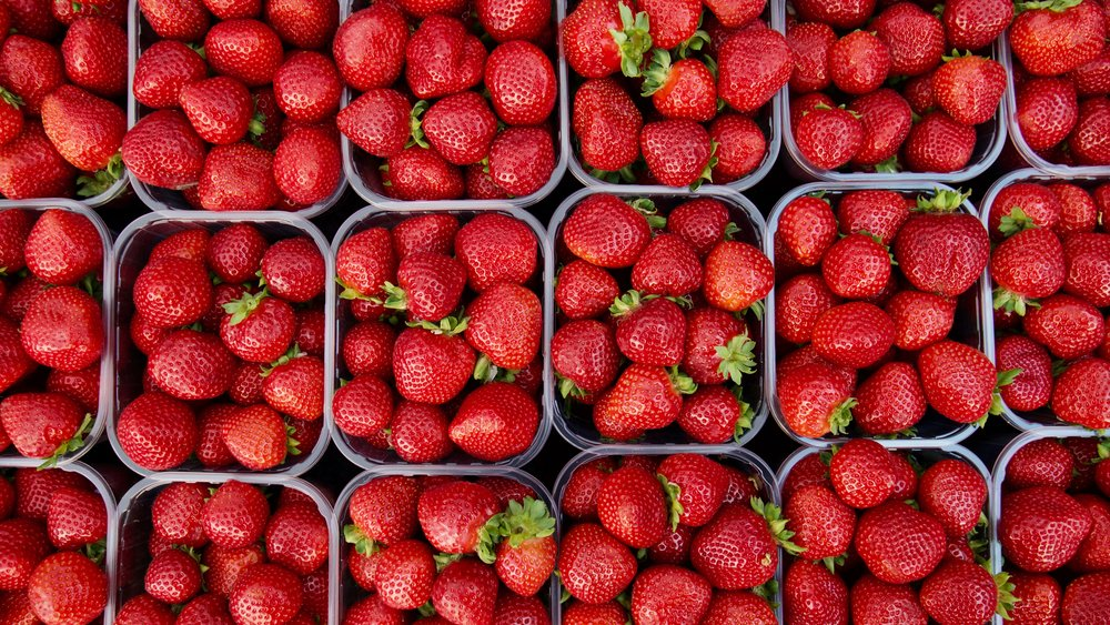 Strawberries - Seasonal Picking: May