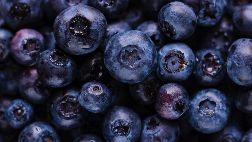 Blueberries - Seasonal Picking: June-August