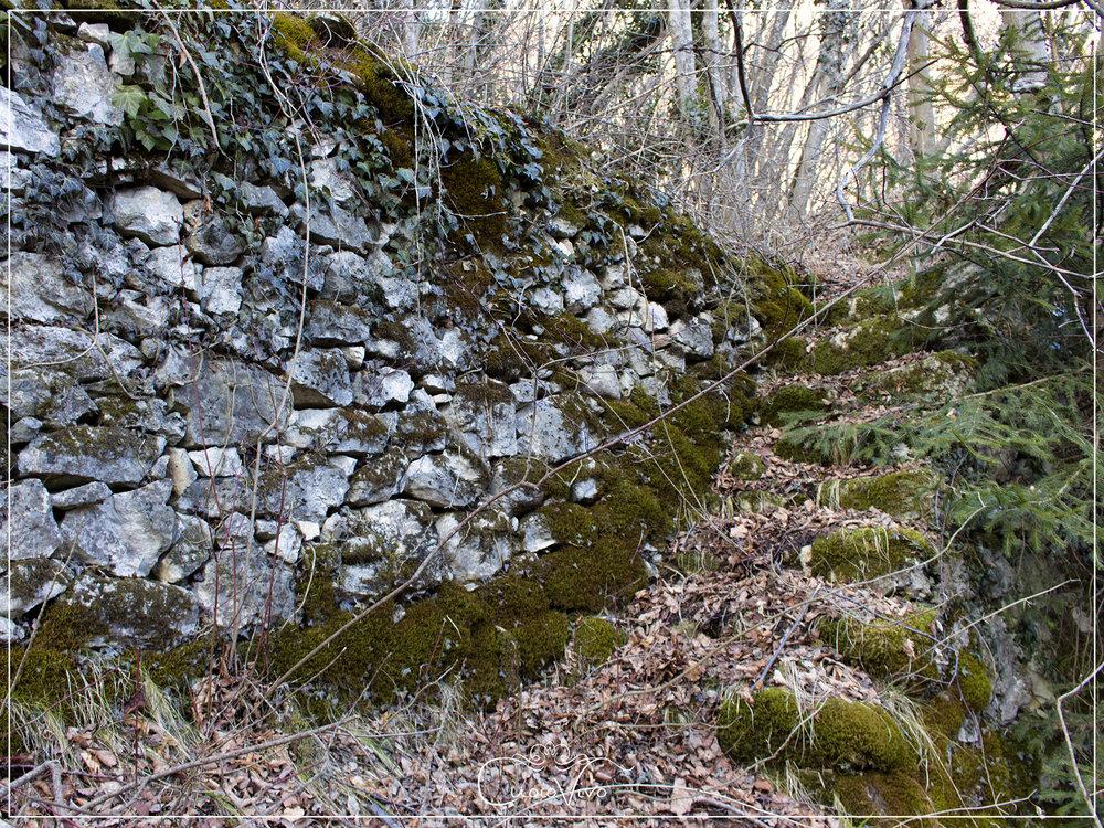 Una delle tante rovine che si possono trovare sulle Castelère