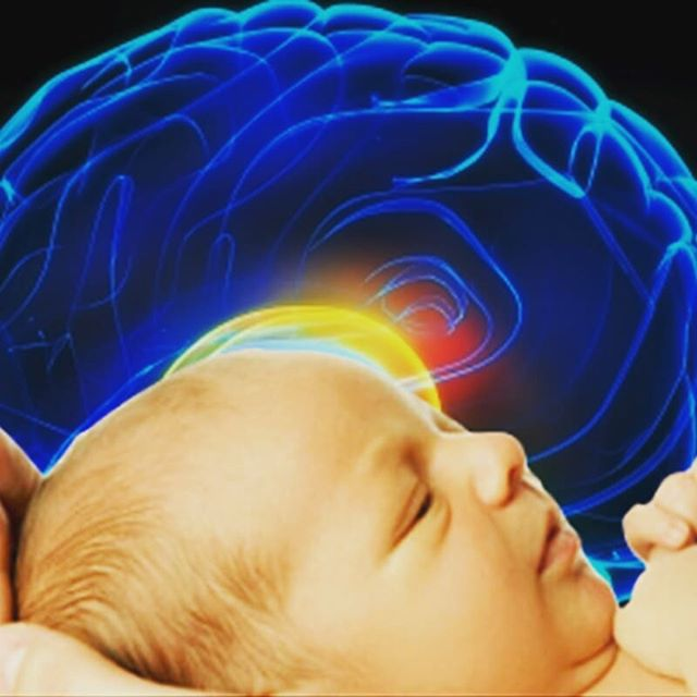 Short course starting in Bermuda in July - Optimize your Baby's Brain Development Through Pregnancy and Breast Feeding www.lifeandthrive.com/currentgroupcourse/