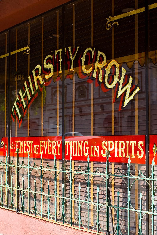 Thirsty Crow- photo credit Krislyn Komarov (3).jpg