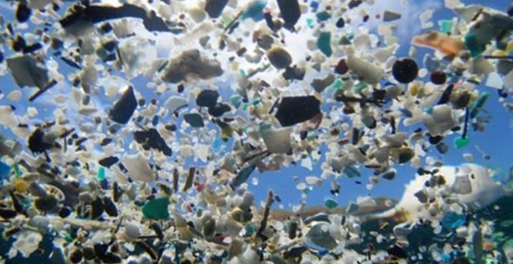 SPC-Ocean-Plastic-72dpi.jpg