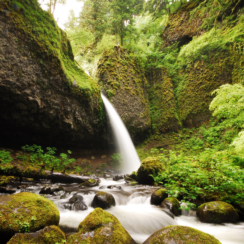 Columbia River Gorge -
