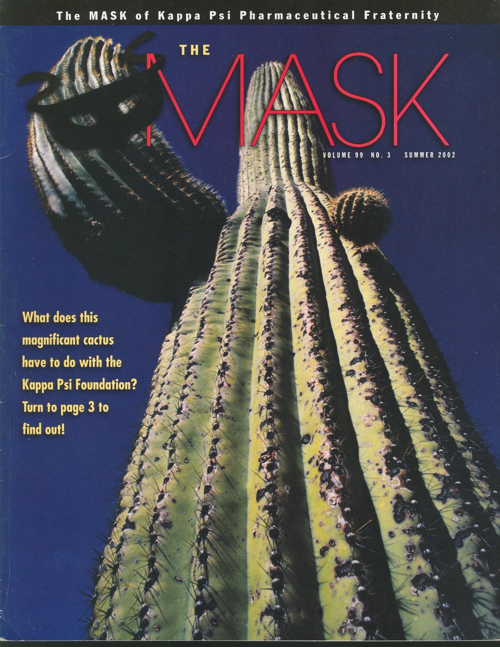 mask_cover_99-3_2002_sum.jpg
