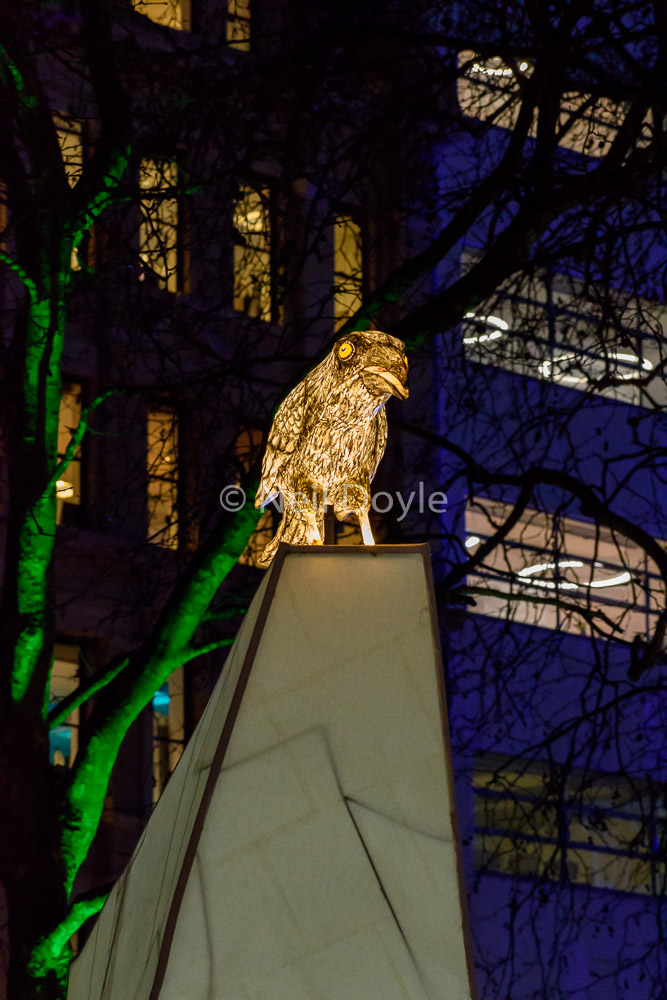 Nightlife-Leicester-Square-crow-Gardens-Neil-Doyle.jpg