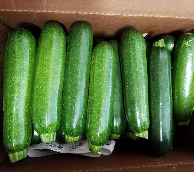 😍 call us now for these lovely little zukes! Lots available from now until infinity! 🥒🥒🥒 #edibledc #acreativedc #BYThings #yummy #healthy #forkyeah #eatwell #pagrown #organic #localfood #photo #instafood #igdc