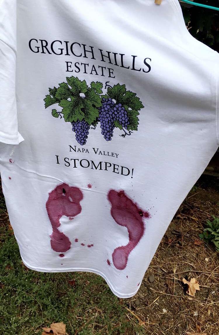 Grgich Hills Estate grape stomping