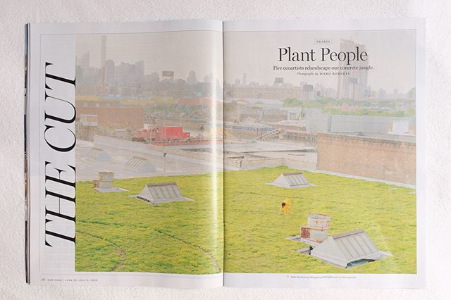 We're incredibly grateful to @nymag and @thecut for including Understory in their thoughtful roundup of urban plant enthusiasts. Through the event and in our upcoming programs, we want to make a case for a direct connection to nature—especially in the city—however you can get it.  More programs + events coming soon... A very special thanks to @poppoppops for everything(!), @ward.roberts for the photo dreamscapes, @sarahjanespellings for the story, and @rebeccarams and her team for styling this new mom a week after giving birth.  #urbanecology #natureishome #plants #natureinthecity