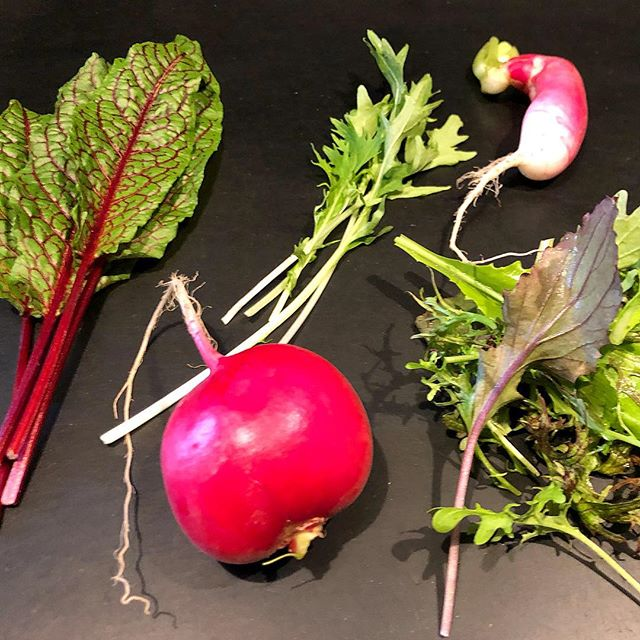 Thanks @heermancefarm for the amazing almost spring crops!  So many ideas - what's should we cook?