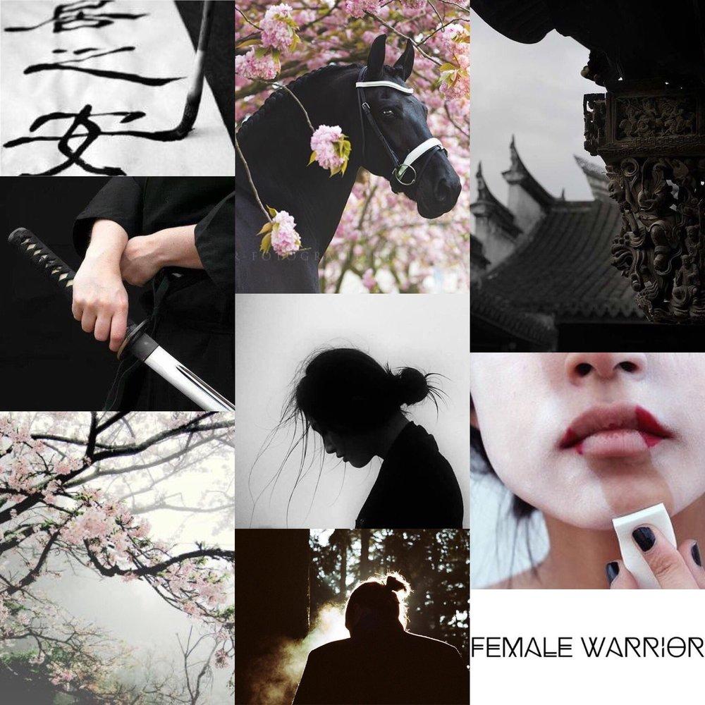 19 - Flame In The Mist//Renee Ahdieh