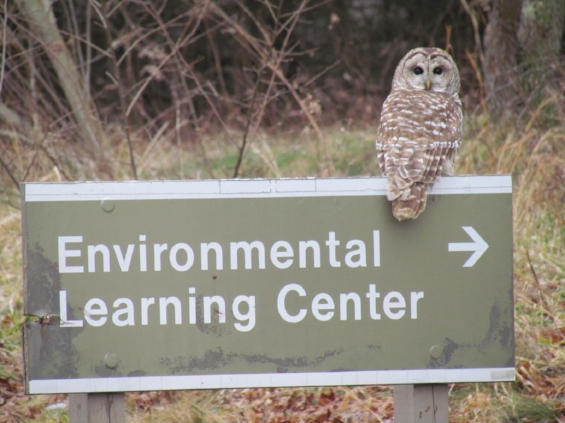 Photo by Crooked Creek Environmental Learning Center