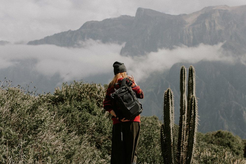Peru_Pinewood_00013.jpg