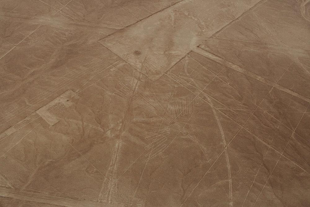 Peru_Pinewood_00020.jpg