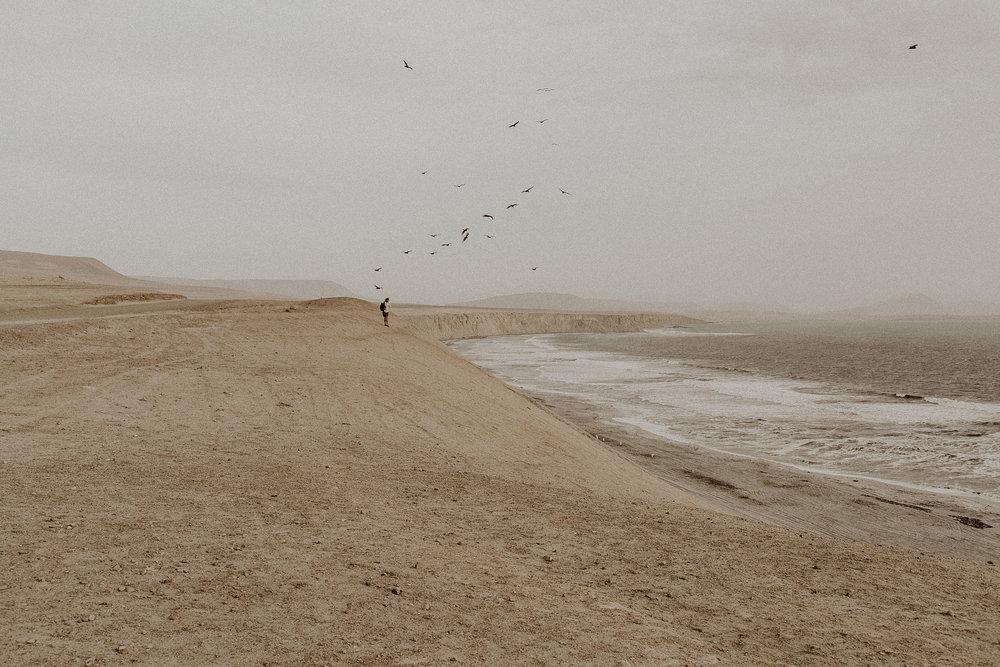 Peru_Pinewood_00018.jpg