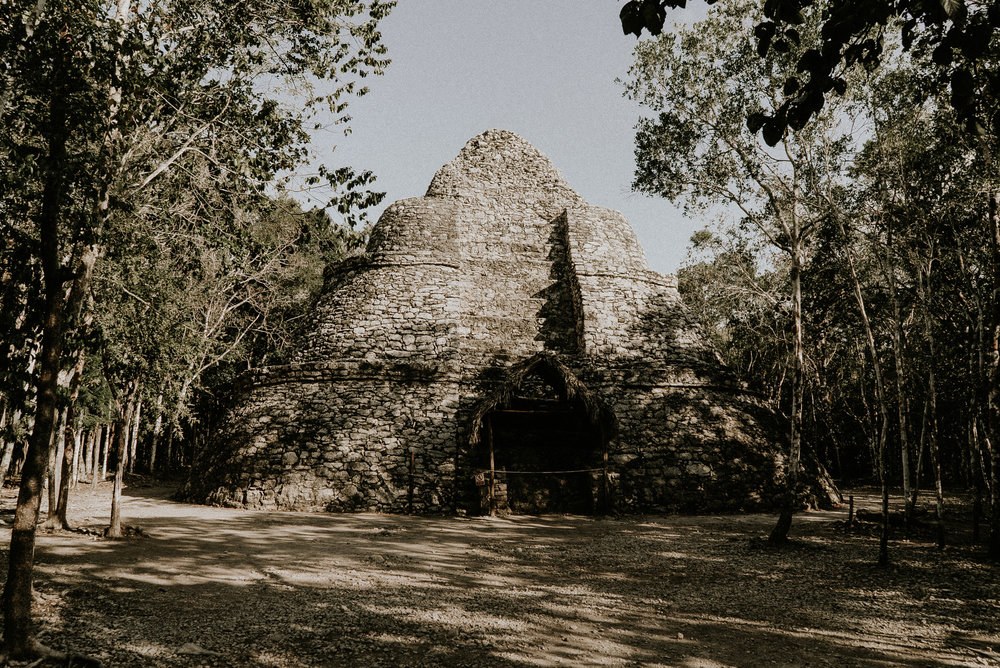 Mexico_Pinewood_00001.jpg