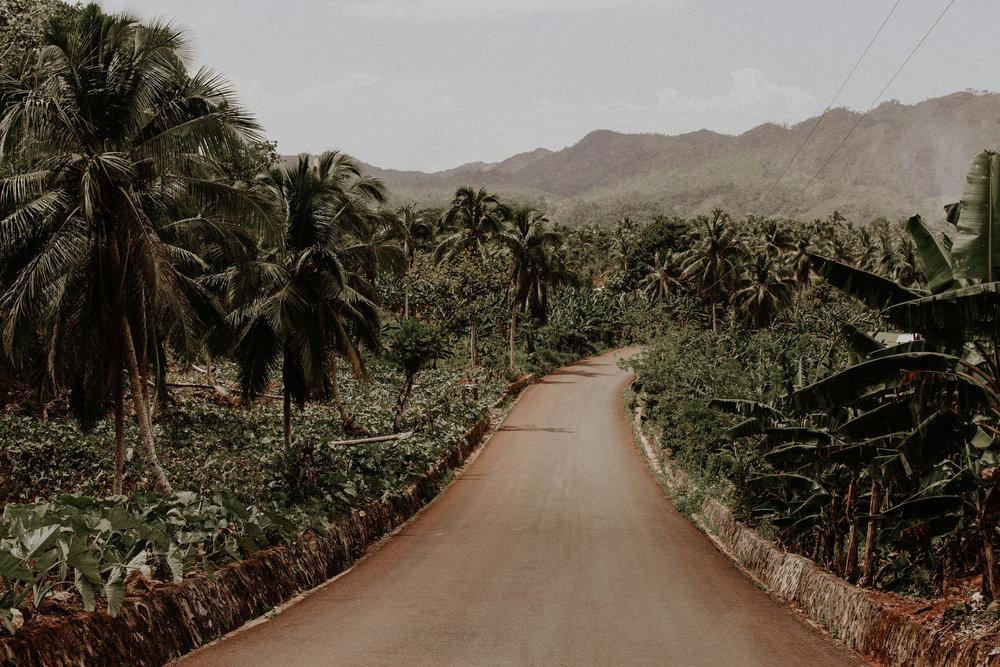 Dominican Rep_Pinewood_00002.jpg