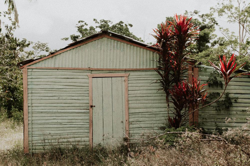 Dominican Rep_Pinewood_00008.jpg
