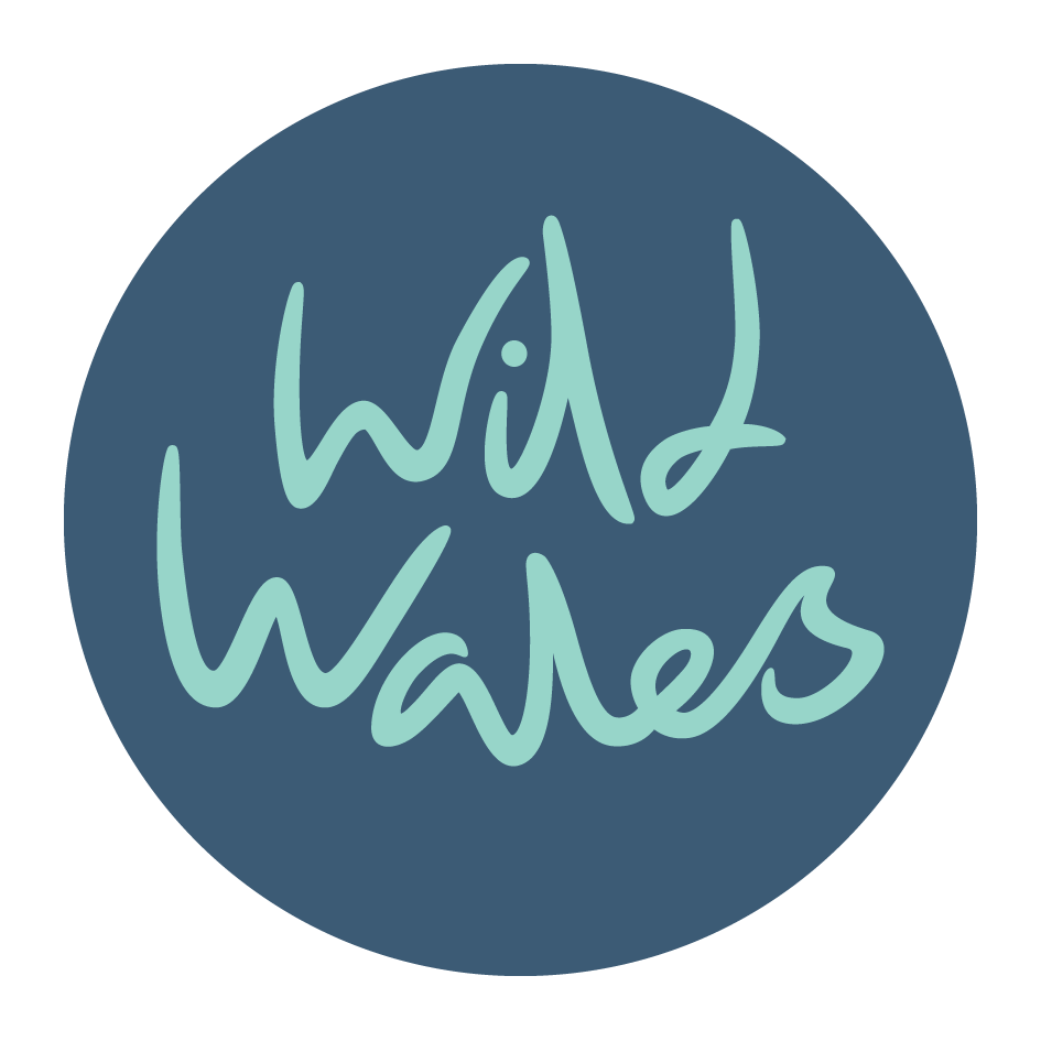 Wild Wales Retreats