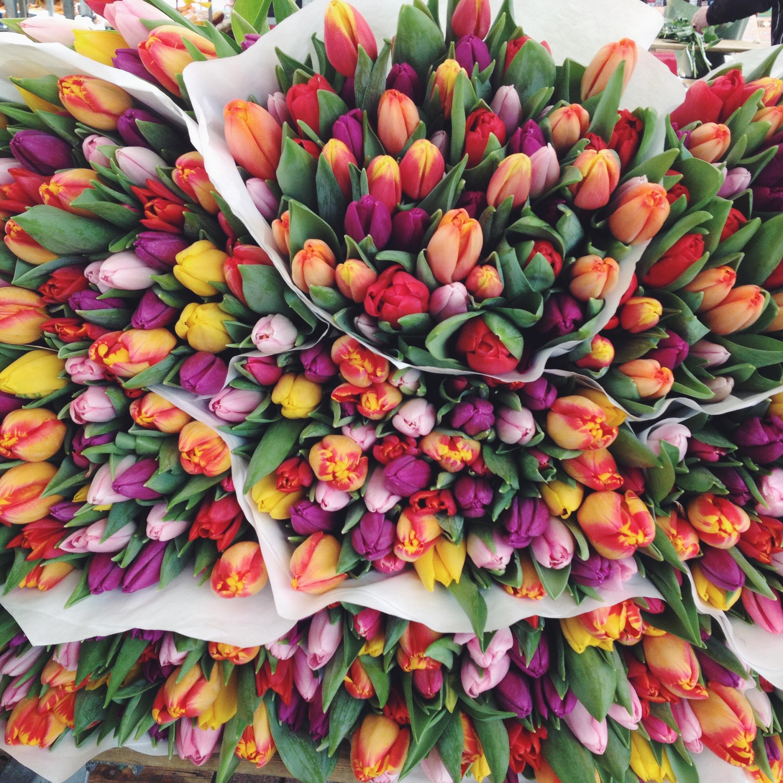 flowermarket | @annevanmidden on instagram