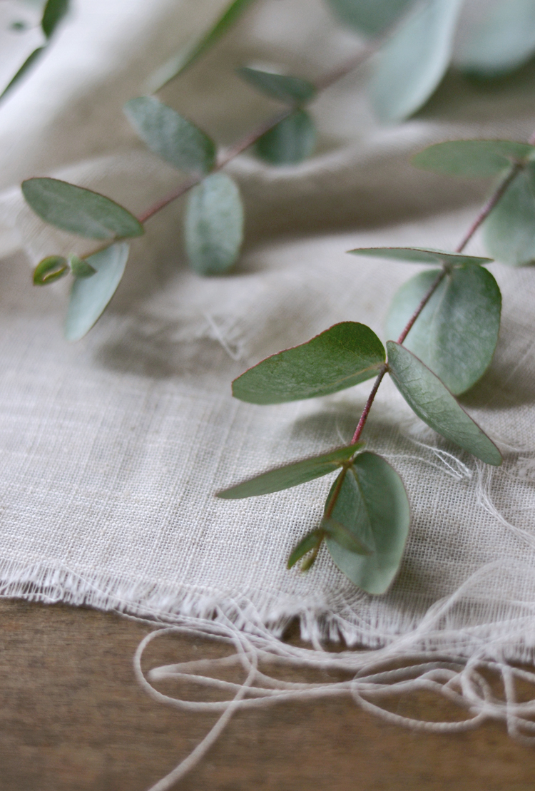 the smell of the Holidays, eucalyptus branches | Inspire Styling journal