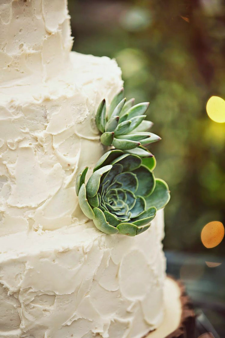Succulent Cake, Floral Design by Amber Reverie - Grey Giraffe Photography