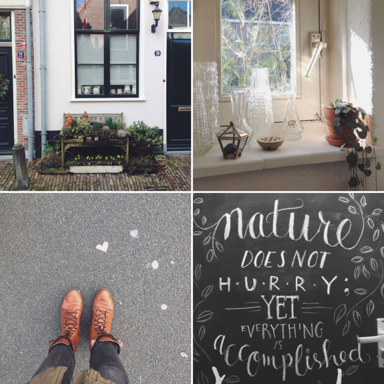 life lately, feb2015 - @annevanmidden on instagram