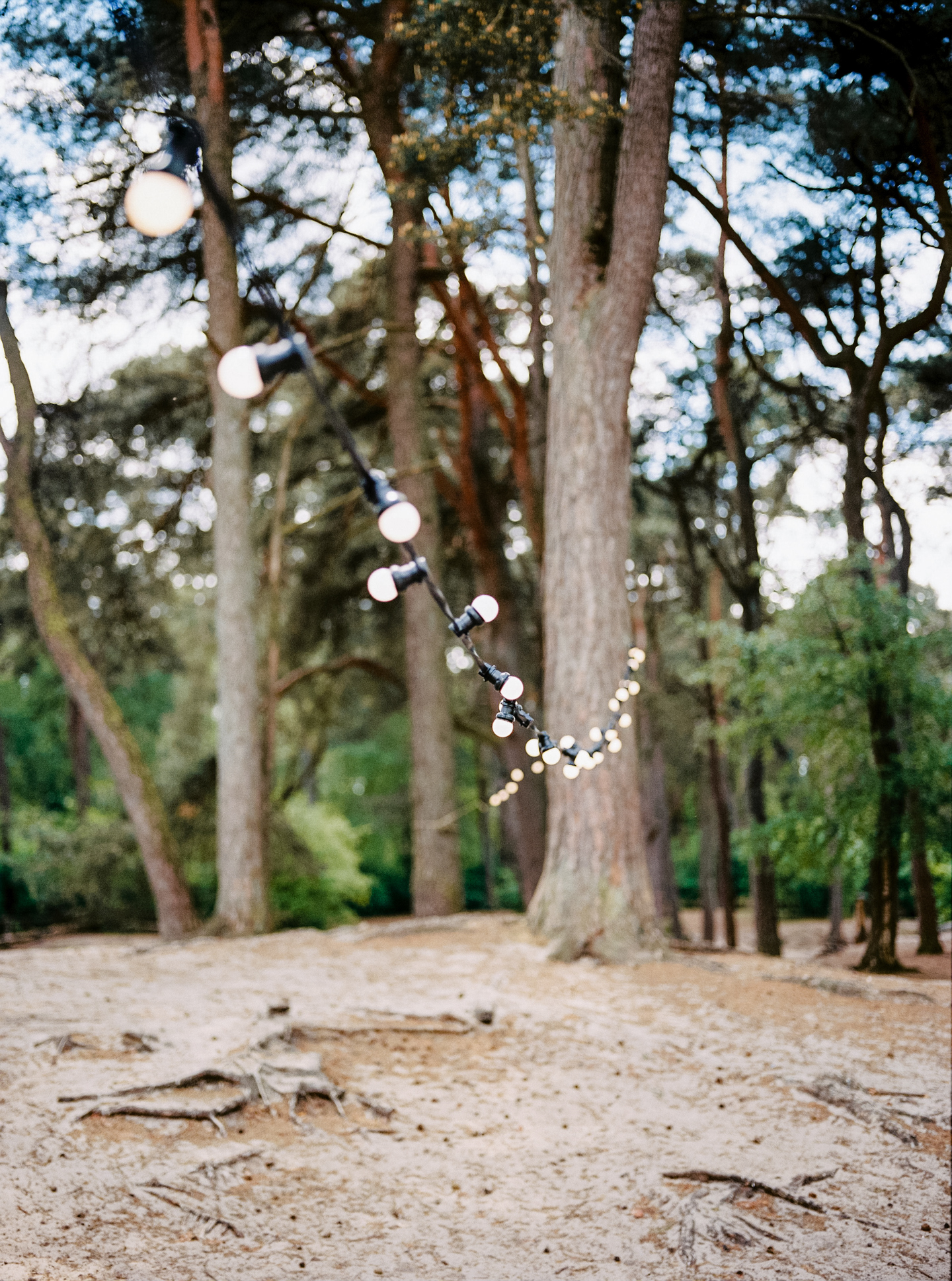spring forest wedding / inspire styling / photo by hanke arkenbout