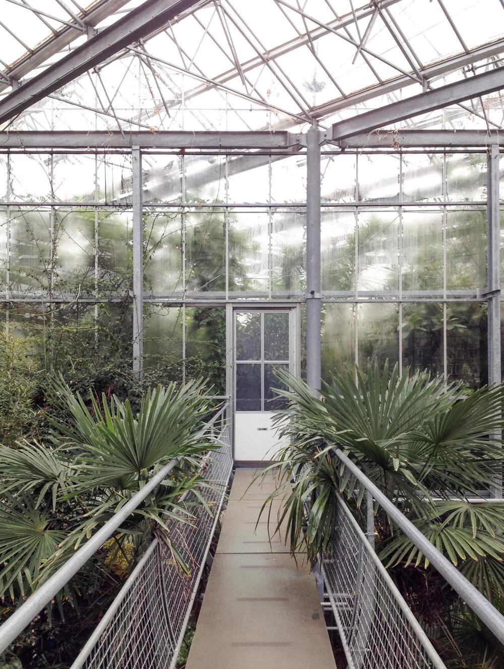 hortus-amsterdam-inspire-styling-1-of-1-2.jpg