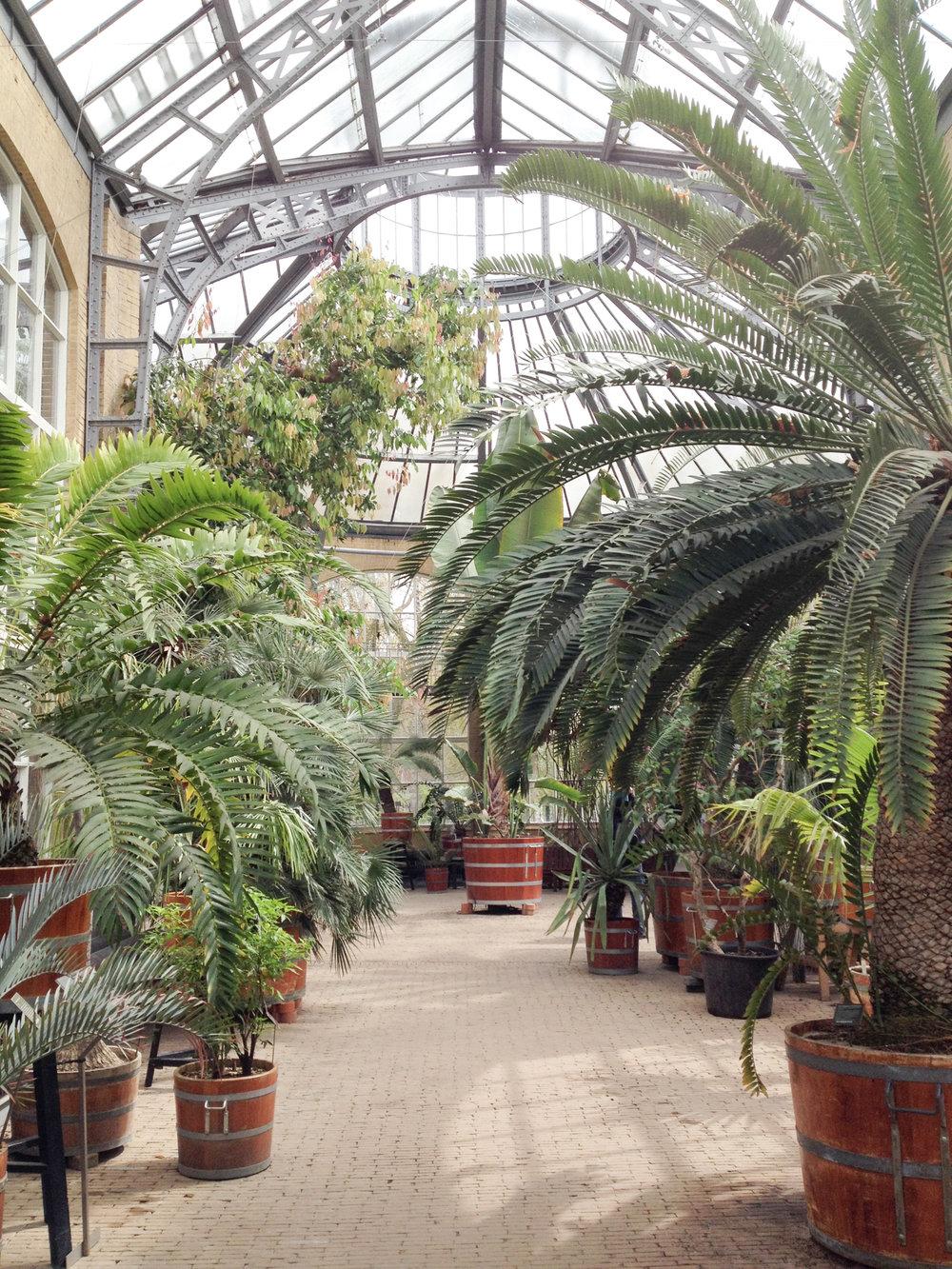 hortus amsterdam - inspire styling
