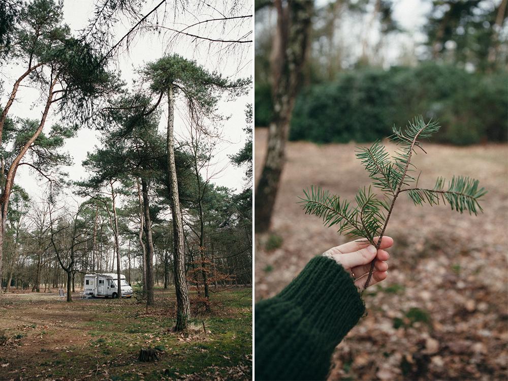 firevan-camp-weekend-inspire-styling-239.jpg