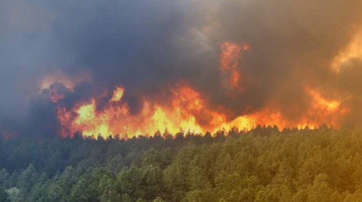 Prevention-forest-fires-Portugal-all-new-mandatory-measures