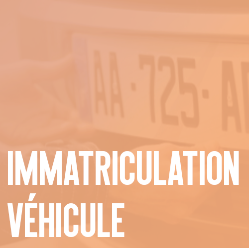 immatriculation voiture.png