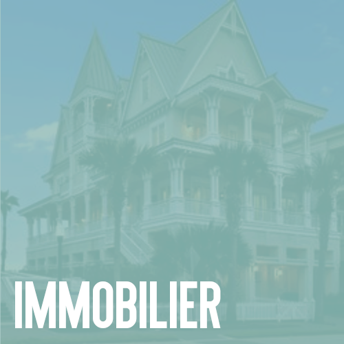 immobilier.png