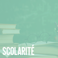 scolarite.png