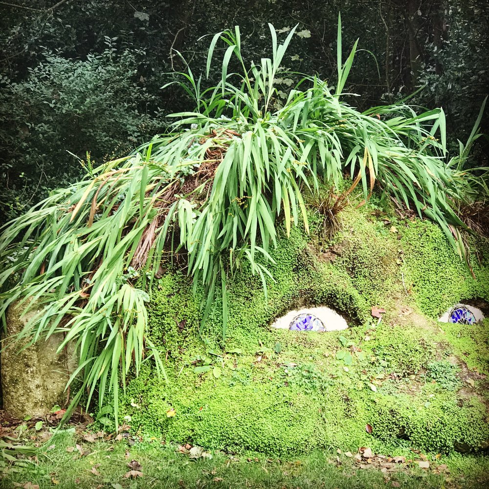 The wonderful Lost Gardens of Heligan