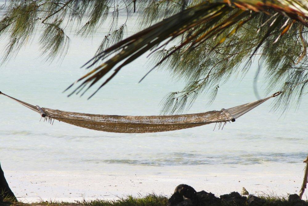 hammock-2676646_1920.jpg