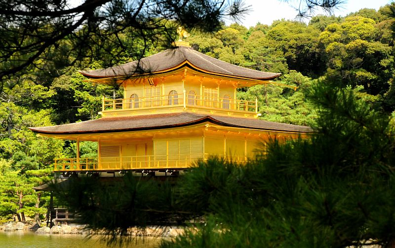 golden pavilion in kyoto_w800_h503.jpg