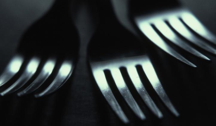 forks-213236-edited.jpg