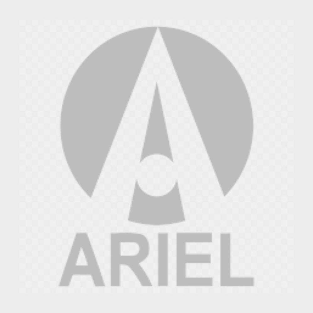Ariel Web Logo.png