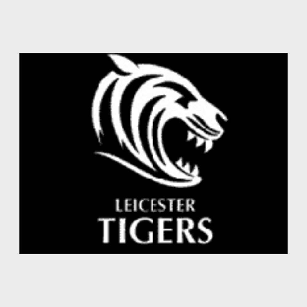 Tigers Web Logo.png