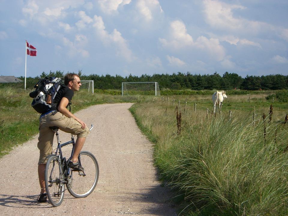 Agva Denmark.jpg