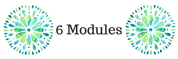 6 Modules, 3 Months.png