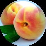 Peach-Leaf-Complex-18.01.2016-150x150.png