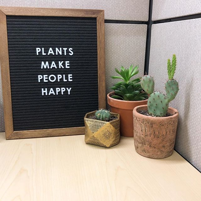 Love having plants at my desk at work, always brightens my day! Happy Monday everyone!