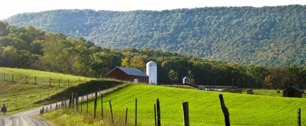 Farm Photo banner.jpg