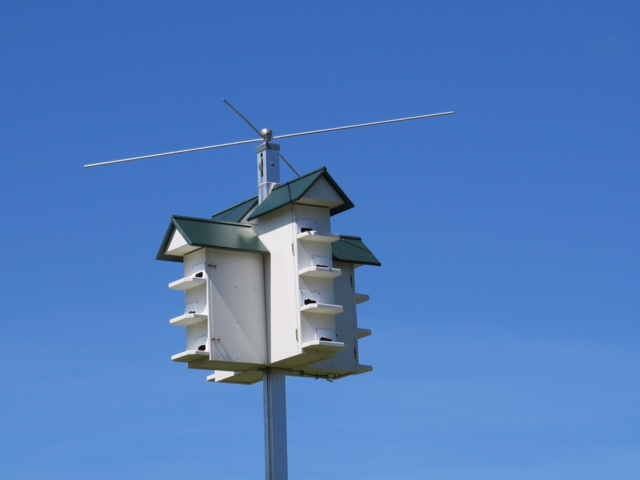 Purple Martin house located near the Venice Audubon Center  By Claire Norton