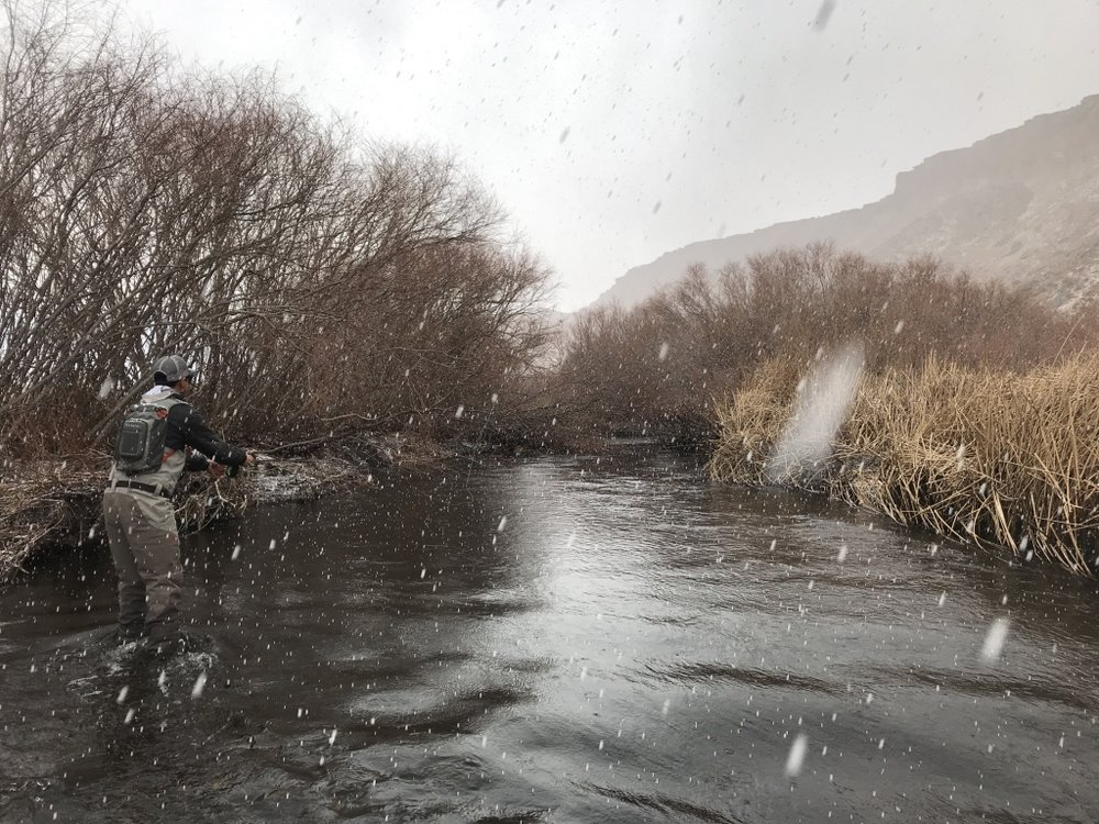 Though rare, there are a few days every winter where you can fish in the snow on the lower Owens River.