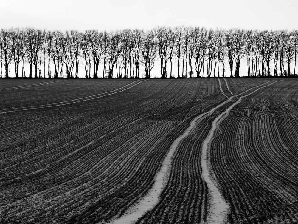 Land Lines 1